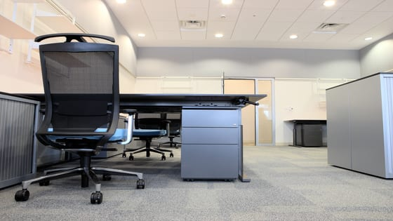 How Often Should You Have Your Office's Carpets Cleaned